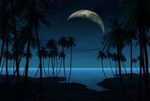 Moon / by Judee Light