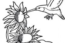 Coloring Pages / by Julie Schroeder