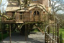 To Live in a Treehouse / by Elizabeth Munday