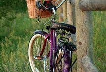 balades à bicyclette / by ingrid fleury