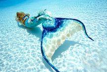 Mermaids!!!! / by Amanda Parkhurst