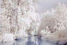 Winter.. / by Julie Ward
