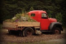 Old Truck Love / by Sarah Walter