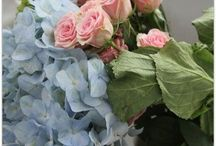 Pretty Petals / Bright & Beautiful! / by Debby Harriettha