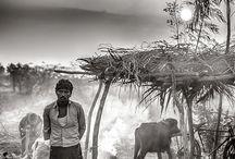 Andhra Pradesh / by Pujita ◕‿◕