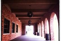 CU-Boulder campus life / by Digital News Test Kitchen at CU-Boulder