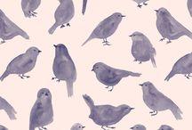 patterns / by Elizabeth Weil