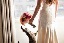 Bridal pictures / by Kristie Godeaux
