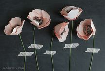 Crafts: Paper Flowers / by Lesley Quesada