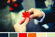 color inspiration / by Jennet Allison