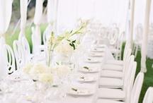 Wedding / by Alex Trevisan