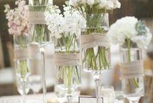 Wedding / by Eva Thomas