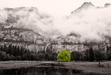 Photography on Artkick / Some of the most popular photographic images on Artkick.   / by Artkick