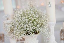 White Wedding / by Shanna Glaeser
