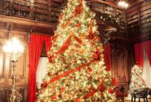 Christmas -- Trees / christmas christmas christmas trees trees trees display decorating decorating decoration decoration red green lime pink purple silver gold outdoor blue auqua brown / by Mariel Hale