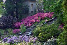 Gardens / by Candy Waldman Crawford