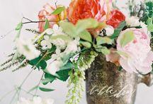 Flowers / by Debbie Williams