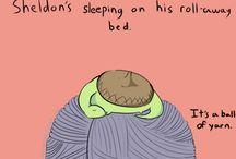 Sheldon's too cute! / by Sara Schaal
