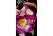 ara iphone / http://www.zazzle.com/pot_case-179038706160800457 / by aspen rose arts