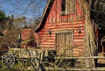 Barns / by Nancy