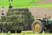 Farming / by Paula Hoffman