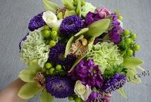 Wedding Flowers / by Amanda Taylor