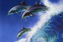 Animals  / Dogs, dolphins, orcas, ect. / by Katie Santa Maria