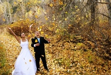 Weddings in Washington State / by WBBG