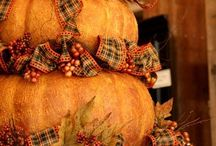 ♥ Pumpkin  ♥ / by RichmondMom