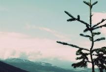 Wanderlust / by Heather Akers