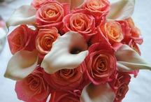 flowers / by Kristen Collins