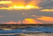 Florida / My best dream....dreams do come true! / by Peggy Enderle