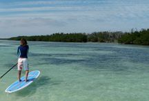Trip to Florida / by Danielle Jelderks