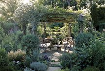 garden love / by Tea Ken