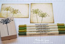 Cards Stamping / by MiffyMarg