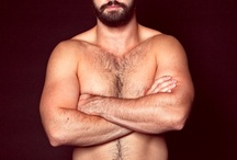 Cute Bears / by Beautiful & Gorgeous Naked Men