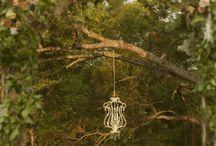 wedding ideas / by Brittany Swansboro