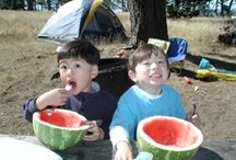 Family Camping Tips & Tricks / Lists, tips, and resources for family camping trips!  / by Trekaroo Family Travel