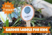 Garden / by Karen D