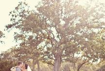 Jay's Dream Day  / Ideas for Jaylyn's wedding!! / by Angela Baughman