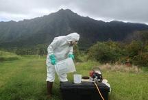 Spray Coverage Work / by Jari S.K. Sugano