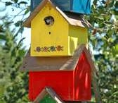 Bird~~~Baths, Feeder, Houses, And Nests / by Brenda Galley