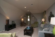 Bonus Room/Theater Room/Finished Basements / by Chris Dion