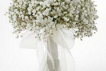 bouquet e fiori / by Erica Zanetti