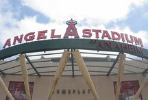 Anaheim Angels / by Pauline Bremer-Helderle
