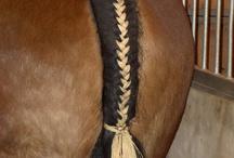 Pony Tails / by Tiffany Bromley Stewart