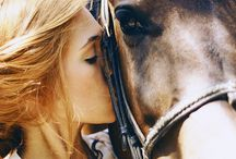 Horses / My true love... / by Jessica M