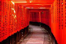Japan / by Muli Helfman