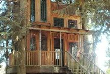 Treehouses that are unbelievable! / by Kande Shackelford