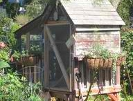 Chicken Coops / by Trudy Honeycutt ~ Crows in the Attic Primitives